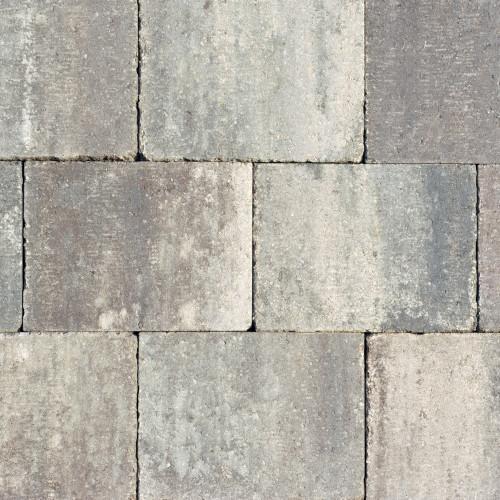 abbey grigio